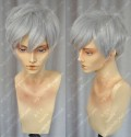 Youth Boy Silver Grey Color Daily Wavy Cosplay Party Wig